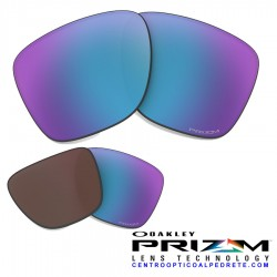 Sliver lens replacement Prizm Daily Polarized (101-088-009)