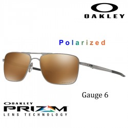 Gauge 6 Satin Chrome/ Prizm Tungsten Polarized