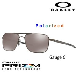 Gauge 6 Pewter / Prizm Black Polarized