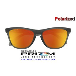 Frogskins Matte Grey Smoke / Prizm Ruby Polarized (OO9013-F8)
