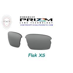 Flak XS Lente Prizm Black (102-992-003)