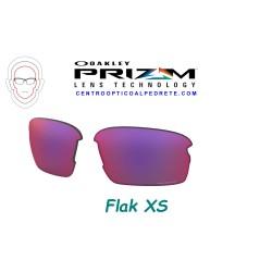 Flak XS Lente Prizm Road (102-992-015)