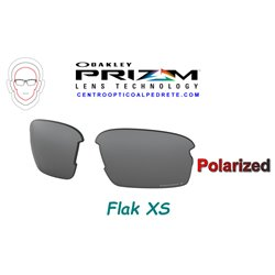 Flak XS Lente Prizm Black Polarized (102-992-004)