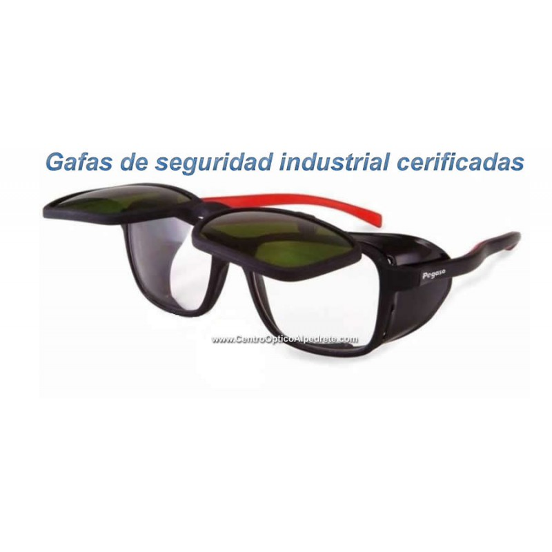 Ray Ban Lens Replacement >> Goggles certified Industrial Pegaso Duplex welding 1095D5 black / red