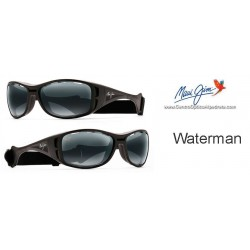 Waterman Negro Mate / Gris Neutro (410-2M)