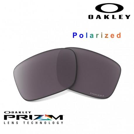 Gascan Lente Prizm Daily Polarized (600-203-017)